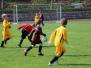 SG Lok Falkenberg - Team Lößfurth 2:10 (0:4)